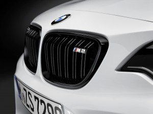 M2 grille